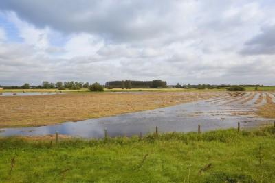 woda zalała część pola uprawnego