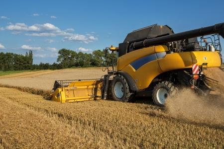 zbiory zbóż z pola