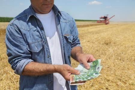 rolnik przeliczający zysk