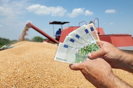 rolnik trzymający euro, w tle zboże