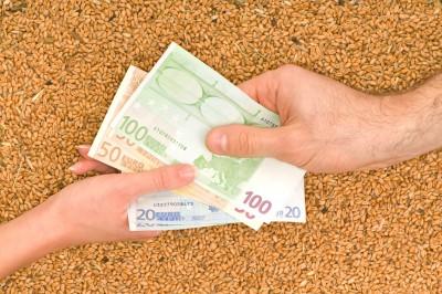 ceny zbóż wyrażone w euro