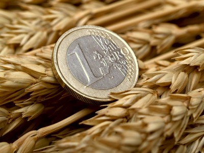 moneta Euro na kłosach zbóż