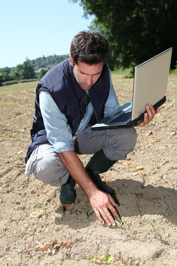 szacowanie skutków suszy w uprawach