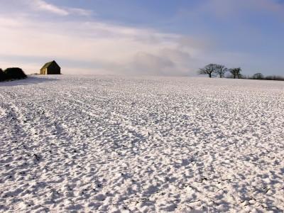 pole uprawne pokryte śniegiem