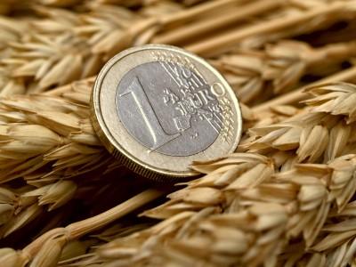 euro położone na kłosach zbóż